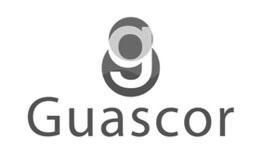 guascor-1-1