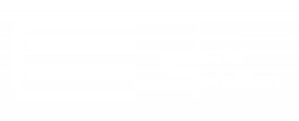 energy solution srl logo bianco