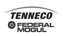 tenneco-federal-mogul